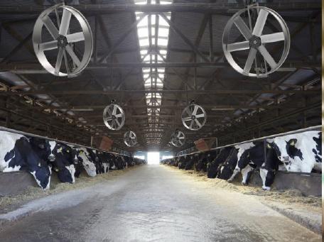 pivot-farm-fans-6-blades-3